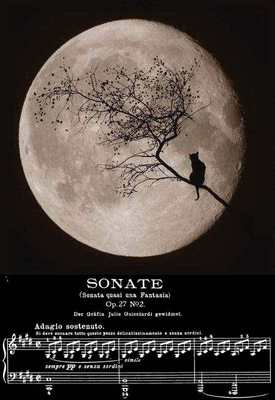 moonlight_sonata