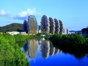 Giant Trees of China