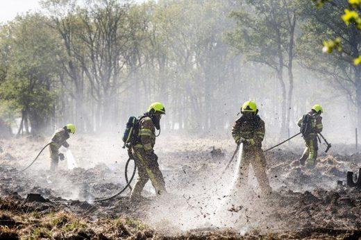 natuurbrand nationaal park limburg